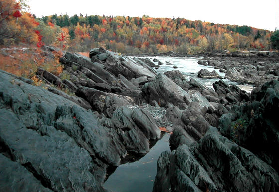 """<strong>Slate and greywacke at Jay Cooke State Park</strong><br />Layers of slate and greywacke—also known as """"dirty sandstone""""--stick out of the St. Louis River at Jay Cooke State Park."""