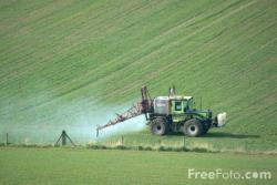 Fertilizer: Good or Bad?: Turns out the answer is neither all good or all bad!  Plants need some nutrients, but humans often overdose crops, causing soil quality (and agriculture production) to degrade.