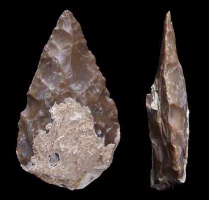 Acheulean Handaxe Science Buzz