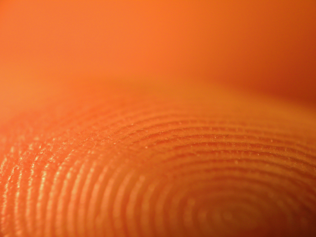 Dna Fingerprint Wallpaper About Than Fingerprints
