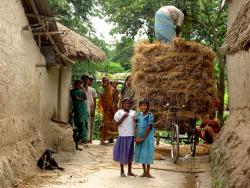 Rural village in Bangladesh: How will nanotechnology benefit them in the coming years?  Courtesy adrenalin.