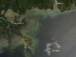 Oil spill in the Gulf of Mexico: NASA's Aqua satellite captured this image of the Gulf of Mexico on April 25, 2010 using its Moderate Resolution Imaging Spectroradiometer (MODIS) instrument. With the Mississippi Delta on the left, the silvery swirling oil slick from the April 20 explosion and subsequent sinking of the Deepwater Horizon drilling platform is highly visible. The rig was located roughly 50 miles southeast of the coast of Louisiana.