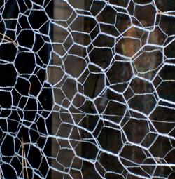 Graphene Looks a Little Like Chicken Wire