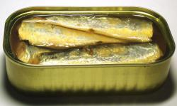 This is not a Mars research station: It is in fact a can of sardines.  But I can see how you might confuse the two.