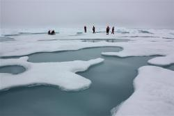 Artic Melt Ponds: NASA scientists carefully navigating the Arctic melt ponds and sea ice in July of 2010. Learn more about artic climate change here.