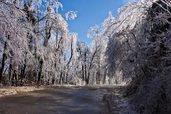 Glass tree road: A road in Hendersonville North Carolina following an ice storm.