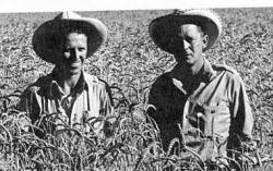 The man they call Borlaug: On the left. The other guy is just some hanger-on, I guess.