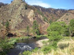 High Park Fire impact on the Cache La Poudre River: A view of the Cache La Poudre River on July 14, 2012