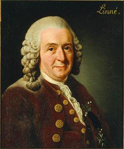 Linnaeus at 68