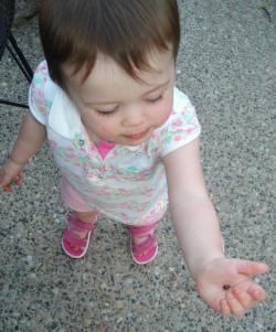 Helping release the ladybugs.