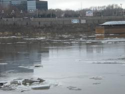 Kate's photos, 3/18 (2): Look across the river to the floodwall: thats the high-water mark for the 1965 flood, the highest in recorded history. That year, the river crested here in downtown St. Paul at 26.01' and spelled the end for the communities down on the river flats.