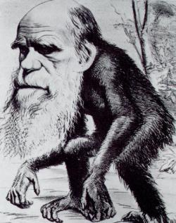 Charles Darwin: The naturalist was often caricatured in publications for his views on evolution.