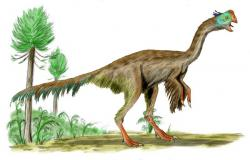 """The Gigantoraptor: Just reemphasizing how weird and cool dinosaurs are.    (Image by """"ArthurWeasley"""")"""