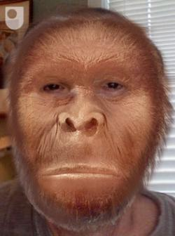 Great-great-great-grandfather Homo habilis: 2.2 million years ago.
