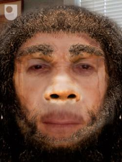 Great-grandpa Homo heidelbergensis: 500,000 years ago.
