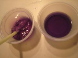 CO2 red cabbage experiment