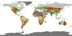 The land we use: Green areas are used for growing crops, brown areas are used for raising animals.