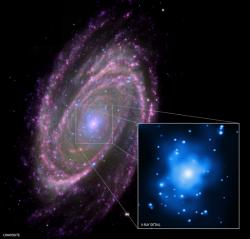 Spiral galaxy M81: The black hole in the center of this galaxy is 70 million times as massive as the Sun, but it behaves exactly the same as much, much smaller black holes.