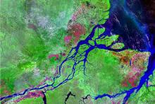 Amazon Rainforest: Rainforest could become desert.   photo from NASA