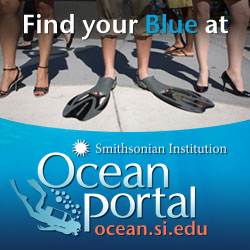 Dive in and explore: Discover amazing videos, pictures, and cool ocean stuff, including teacher resources and actions you can take.