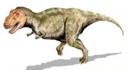 Mmmm, that smells good: New research concludes that T-rex dinosaurs had an excellent sense of smell.