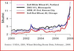 Wheat prices soar