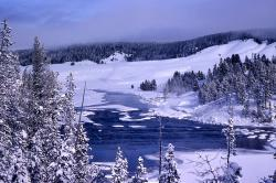 Pristine snow blanket: Environmental purists want winter in Yellowstone to look more like this without snowmobile noise, exhaust or tracks.