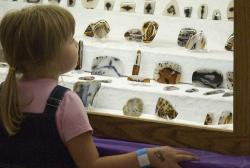 Agates on display: A young visitor admires a collection of Montana agates.