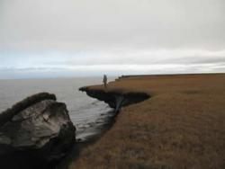 Just like castles made of sand: USGS researcher Ben Jones measuring AK coastal erosion on the Beaufort Sea.
