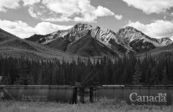 The Canadian Rockies: Source of a new treasure trove of amazing Cambrian fossils