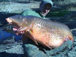 Dude just took a huge carp: out of the lake. The carp referenced in the article, however, was found in a cave near a lake.