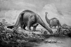 Brontosaurs-a-chomping: The constant eating by herds of sauropods like these no doubt produced a constant flow of methane into the atmosphere.