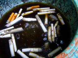 Butt out: Just think, if you quit smoking you won't have to deal with messes like this any more.