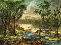 Illinois landscape, 300 million years ago: Late 19th Century illustration portraying a Carboniferous rainforest