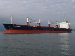 Cargo ships carry invasive species in ballst water