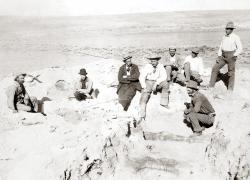 The Titans of Paleontology in 1899: Paleontologists from the American Museum drop in on paleontologists working the Carnegie quarry at Sheep Creek in Wyoming. Jacob Wortman crouches next to the Diplodocus bones exposed on the quarry floor. The rest of those present are (L-R) Bill Reed, Albert Thompson, William Holland, Henry F. Osborn, W. D. Mathews, Walter Granger, and R. S. Lull. Arthur Coggeshall may have taken the photo.