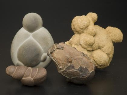 Concretions: Concretions can come in all sorts of shapes, colors, and sizes. What do they look like to you?