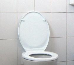 Have you ever seen anything more dull?: Even the toilet seems to be yawning.