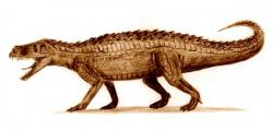 A crurotarsan: Pretty cool, but don't put any bets on it.