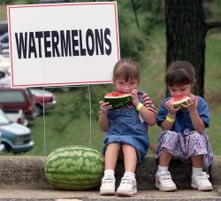 Mmmm, mmmm good: Is there anything better than a summer day and a slice of watermelon? I'll take my watermelon with seeds or without; I'm not picky.