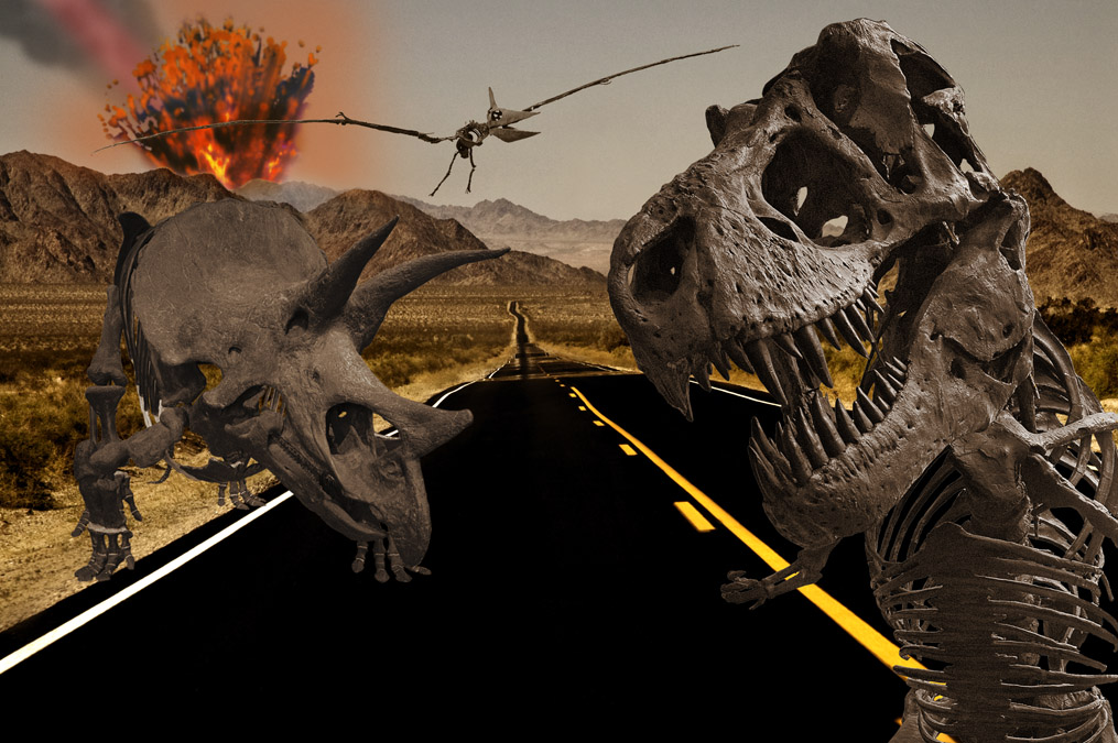dinosaur killing asteroid size - photo #22