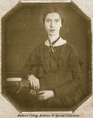 Emily Dickinson: A scientific mind?