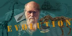 Evolution prevails: The teaching of creationism in science classrooms has been banned in the UK.