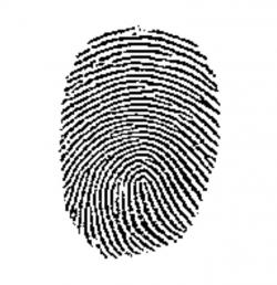 "Fingerprint errors: Fingerprint ""science"" is sometimes mistaken"