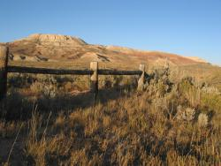 Fossil Butte: The rich fossil deposits were first discovered by workers for the Union Pacific Railroad.