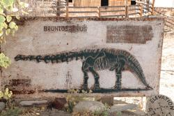 Fossil Cabin Museum information sign: Brontosaurus was first named for a specimen discovered at Como Bluff.