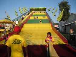 Gravitation: Fair-goers can experience the persistent tug of gravity for just three bucks.