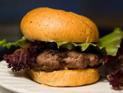 hamburger: what is it really made from?