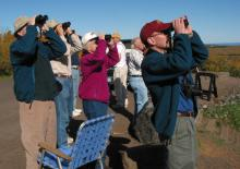 Hawk watchers at Hawk Ridge: Photo courtesy Mark Ryan