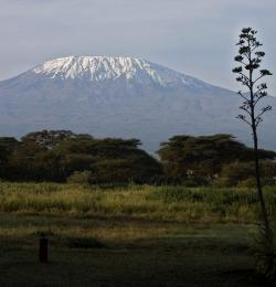 Snow job?: Researchers who study Africa's Mount Kilimanjaro acknowledge that its snow and ice cap is retreating, but they think other factors are at play other than global warming (Photo by mailliw)